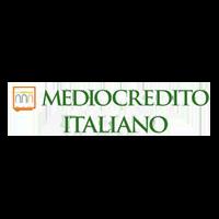 mediocredito italiano logo